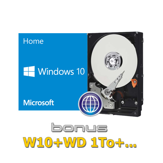 MS-W10 + WD Hard-Disk
